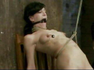 یک دختر زیبا با شور و شوق دانلود فیلم سکسی اچ دی گربه را در استخر لیسید